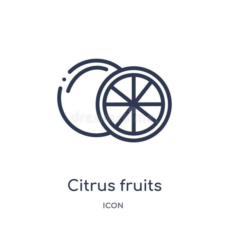 Liniowa cytrus owoc ikona od Karmowej kontur kolekcji Cienieje kreskową cytrus owoc ikonę odizolowywającą na białym tle owoce cyt royalty ilustracja