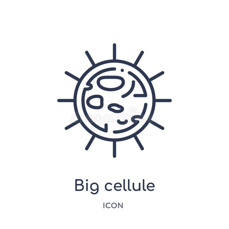Liniowa duża cellule ikona od ciało ludzkie części zarysowywa kolekcję Cienieje kreskową dużą cellule ikonę odizolowywającą na bi ilustracji