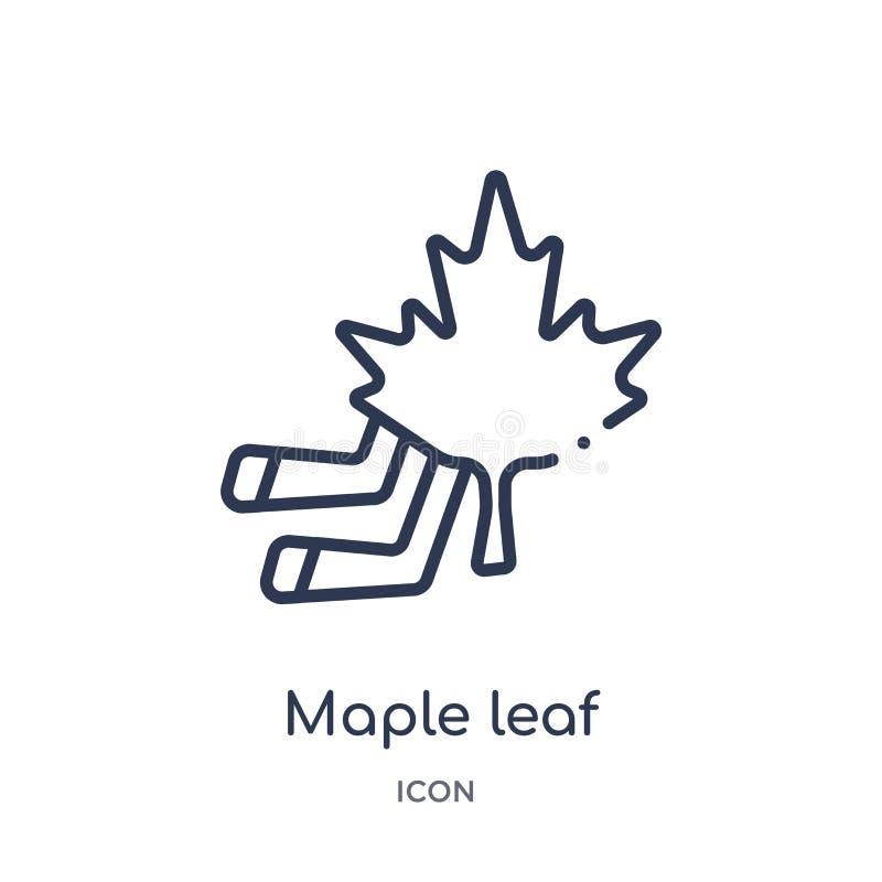 Liniowa liść klonowy ikona od Hokejowej kontur kolekcji Cienieje kreskową liść klonowy ikonę odizolowywającą na białym tle liść k royalty ilustracja