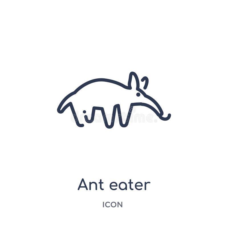 Liniowa mrówka zjadacza ikona od zwierząt zarysowywa kolekcję Cienieje kreskową mrówka zjadacza ikonę odizolowywającą na białym t ilustracja wektor