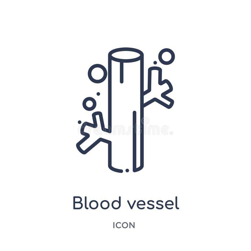 Liniowa naczynie krwionośne ikona od ciało ludzkie części zarysowywa kolekcję Cienieje kreskową naczynie krwionośne ikonę odizolo ilustracji