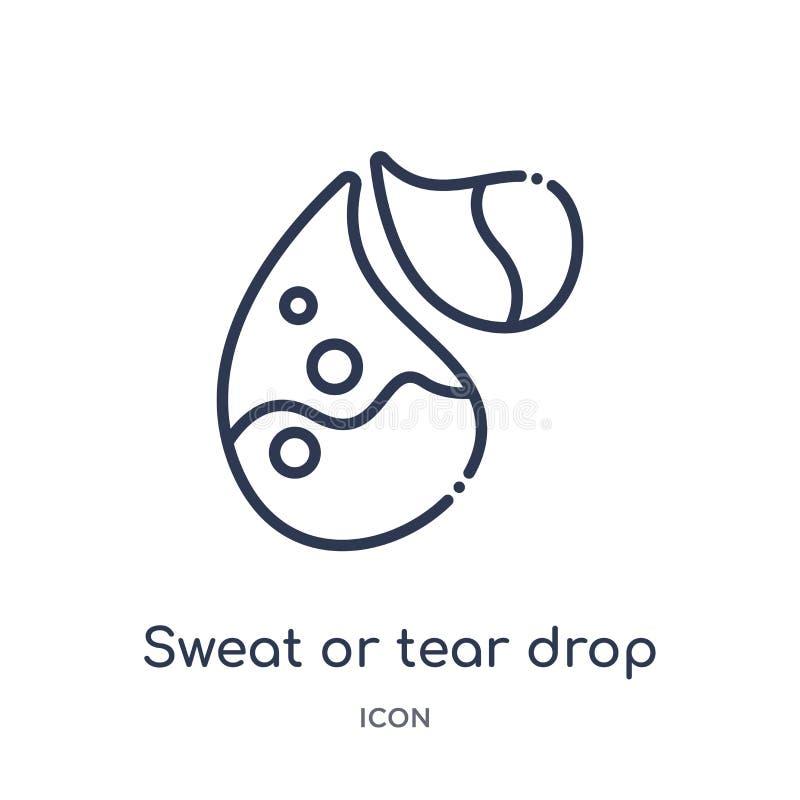 Liniowa potu lub łzy opadowa ikona od ciało ludzkie części zarysowywa kolekcję Cienieje linii łzy lub potu opadową ikonę odizolow ilustracji