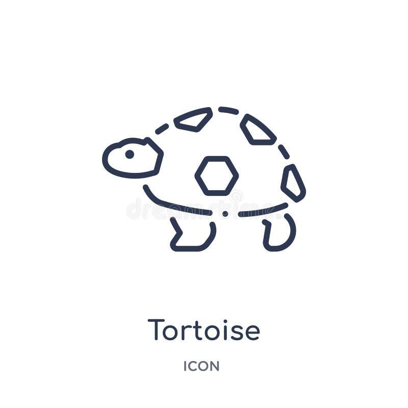 Liniowa tortoise ikona od zwierząt i przyroda zarysowywamy kolekcję Cienieje kreskowego tortoise wektor odizolowywającego na biał ilustracji