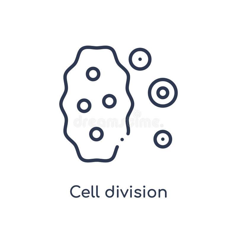 Linjär symbol för celluppdelning från kemiöversiktssamling Tunn linje vektor för celluppdelning som isoleras på vit bakgrund cell royaltyfri illustrationer