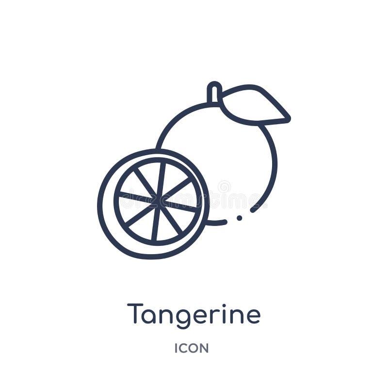 Linjär tangerinsymbol från fruktöversiktssamling Tunn linje tangerinsymbol som isoleras på vit bakgrund moderiktig tangerin stock illustrationer