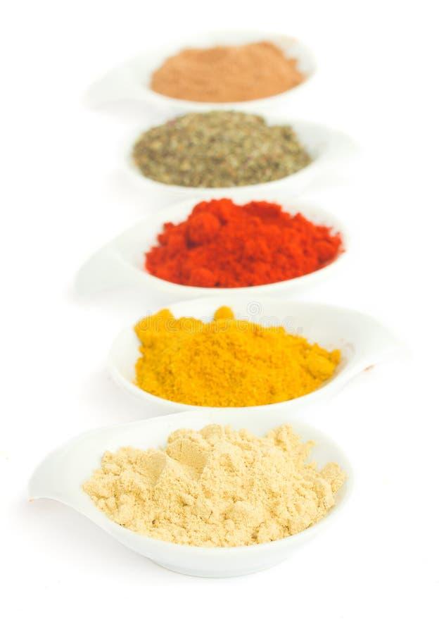 Linje av kryddor på vit royaltyfri fotografi