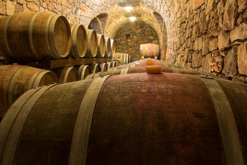 Linje av vinfat royaltyfria foton
