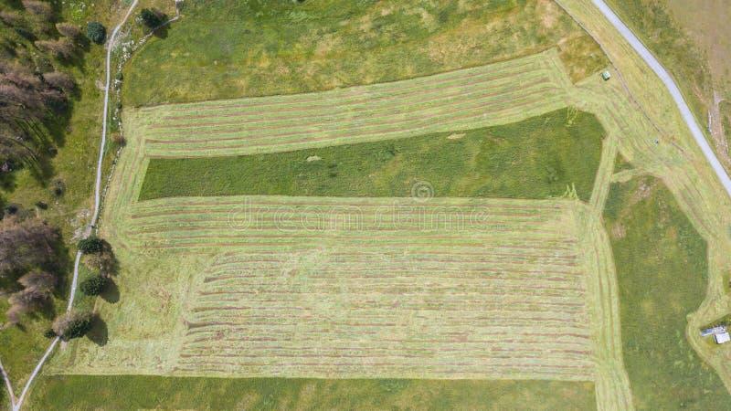 Linje för jord` s Ett vertikalt perspektiv för surr av jord`en s färgar och formar Jordbruks- snitt för gräsfält royaltyfri foto