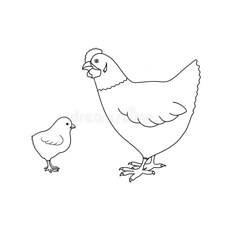 Linje illustration för hand för höna och för fågelunge för konstlantgårddjur som utdragen isoleras på vit bakgrund royaltyfri illustrationer