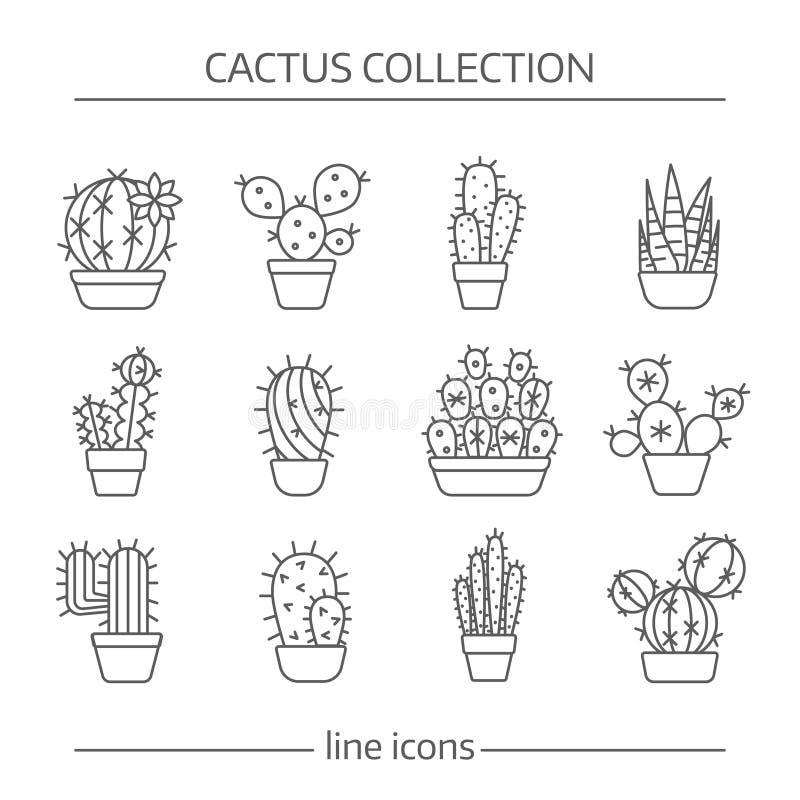 Linje symboler av kaktuns royaltyfri illustrationer
