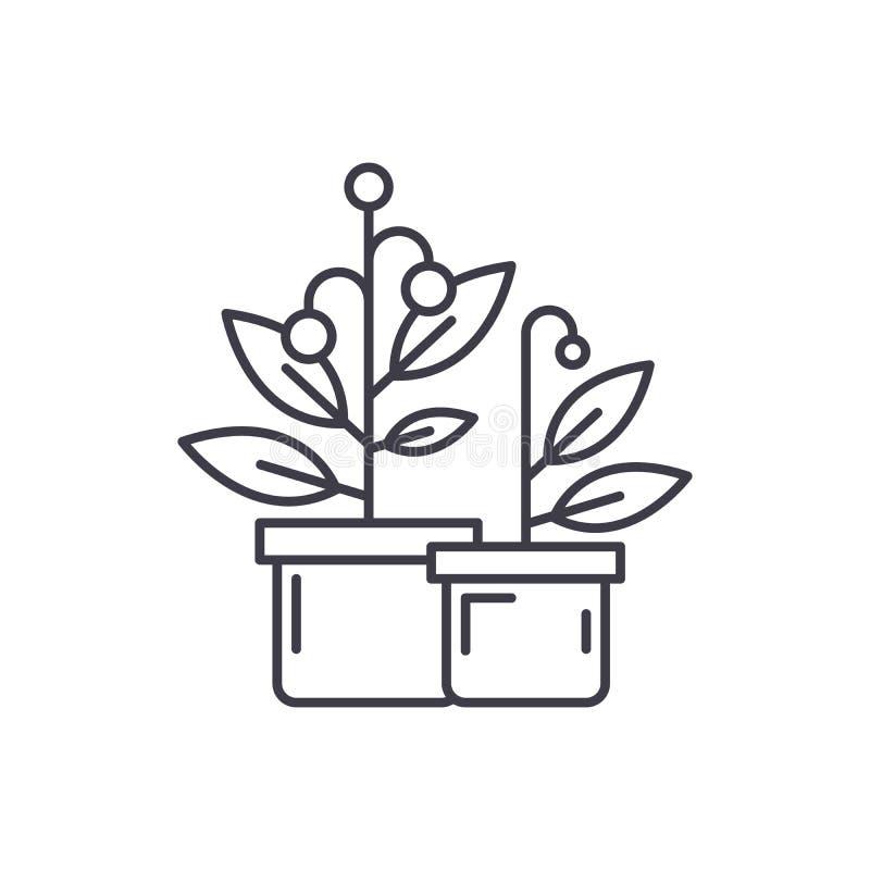 Linje symbolsbegrepp för kryssningskepp Illustration för vektor för kryssningskepp linjär, symbol, tecken royaltyfri illustrationer
