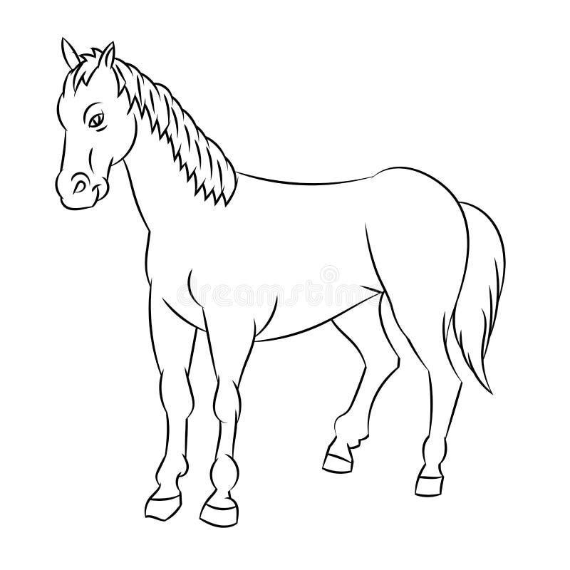 Linje teckning av hästen - enkel linje vektor vektor illustrationer