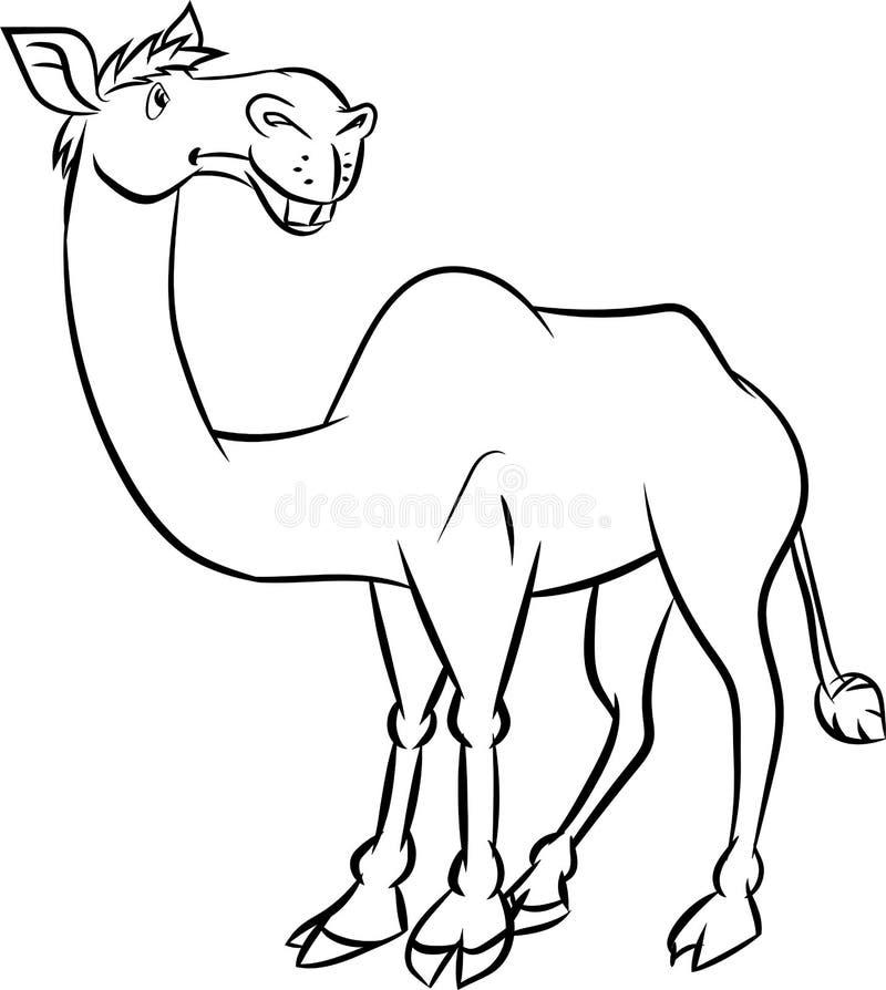 Linje teckning en kamel - vektorillustration royaltyfri illustrationer