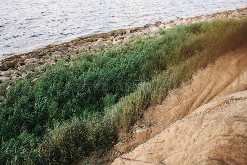 Linjer av havet, stenar, sand, gräs arkivbild