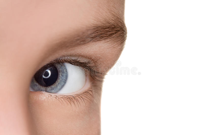 Linker blauw oog van kind dichte omhooggaand royalty-vrije stock afbeeldingen