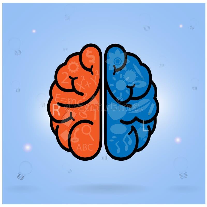 Linkerhersenen en juist hersenensymbool, creativiteitteken, vector illustratie