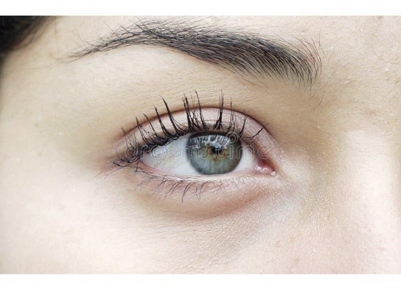 Download Linkes Auge stockfoto. Bild von vorstellung, gefühl, ansicht - 37576