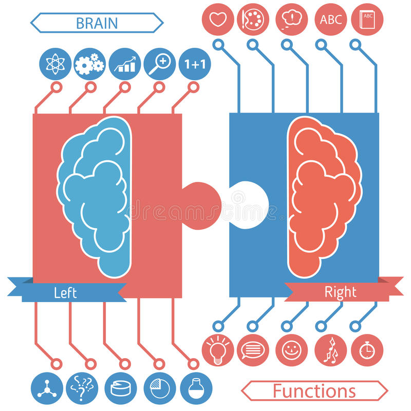 Linkes und rechtes Gehirn arbeitet Konzept vektor abbildung