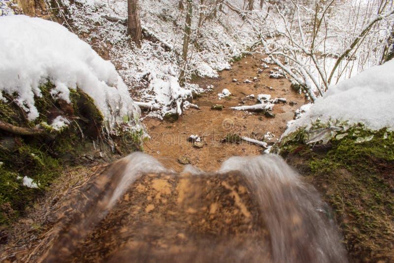 Linn Waterfall vicino su è fotografata nella foresta dell'inverno presa vicino a Linn, Svizzera, nel cantone di Argovia immagine stock libera da diritti