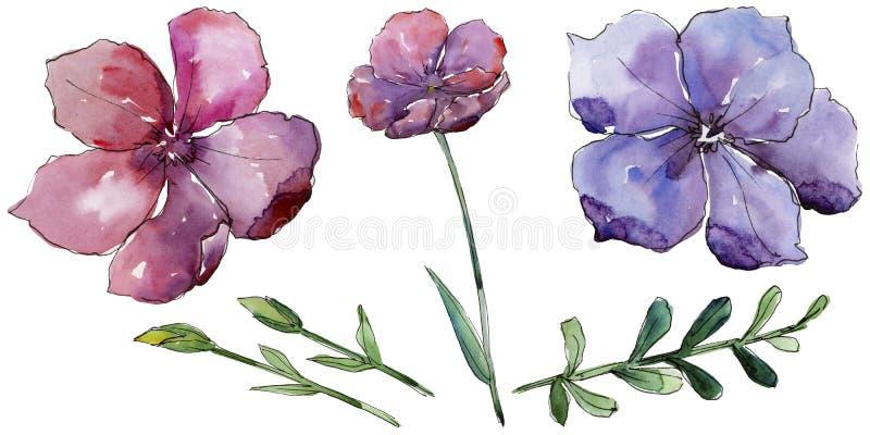 Lino variopinto Fiore botanico floreale Wildflower selvatico della foglia della molla isolato illustrazione vettoriale