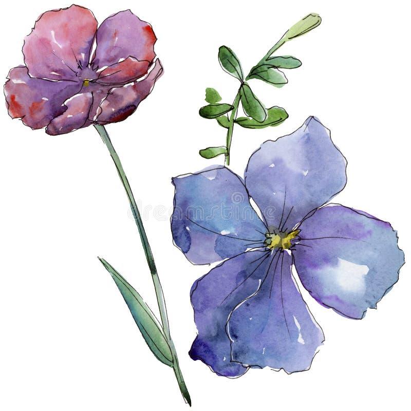 Lino variopinto Fiore botanico floreale Wildflower selvatico della foglia della molla isolato illustrazione di stock
