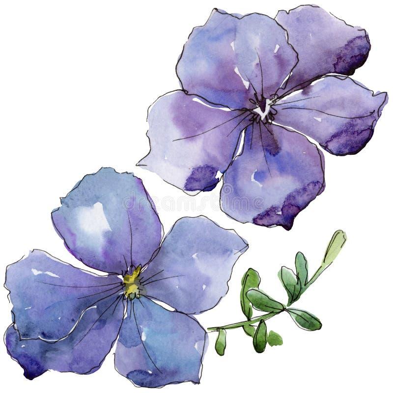 Lino viola Fiore botanico floreale Wildflower selvatico della foglia della molla isolato illustrazione di stock