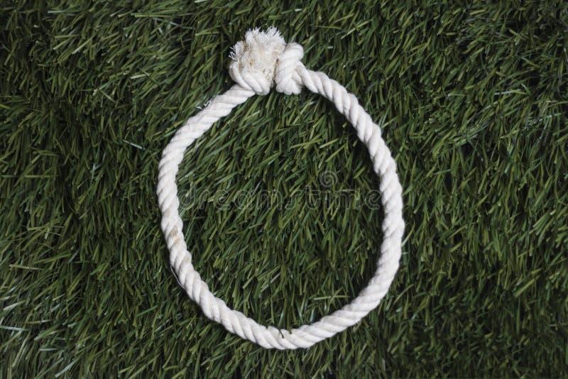 Linowy abecadło na trawie list o fotografia stock