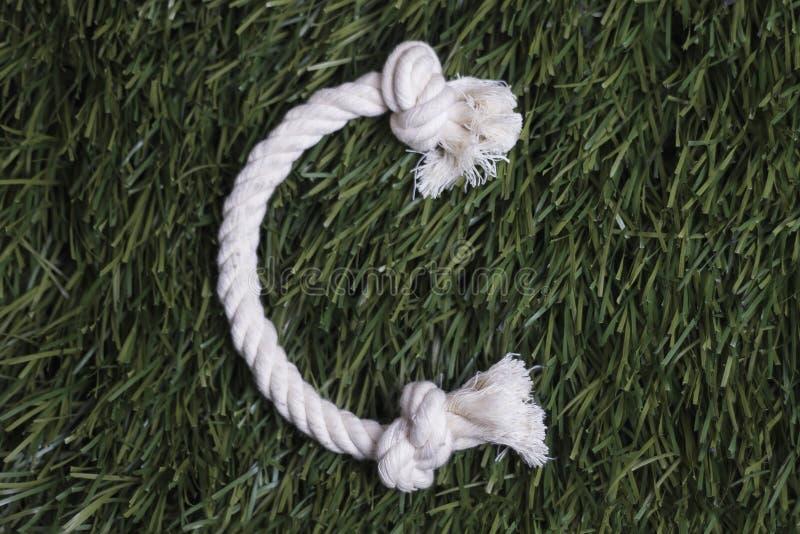 Linowy abecadło na trawie Pisze list C obrazy stock
