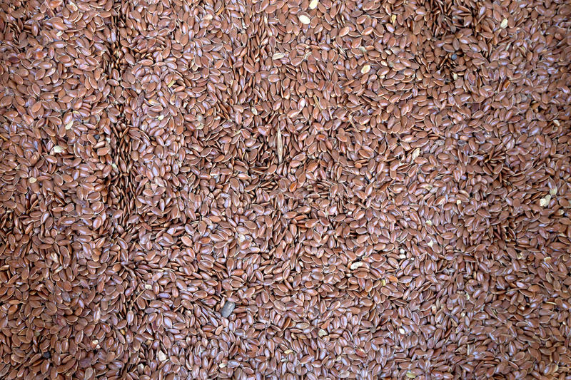 Linseed or flaw seed. Background royalty free stock images