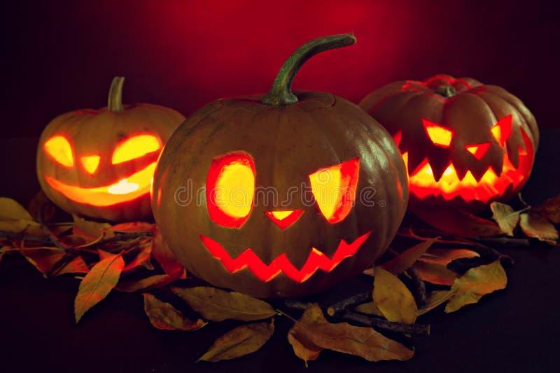 Linterna de la calabaza de Halloween con las hojas secas con las velas ardientes imagenes de archivo