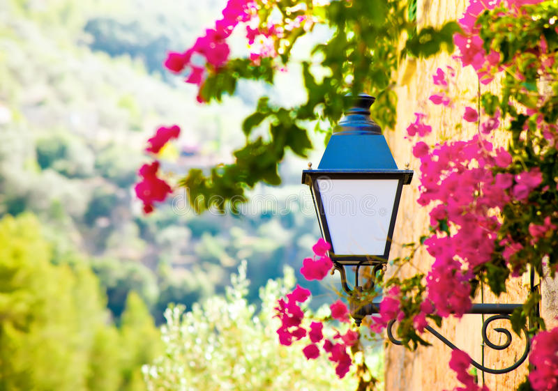 Linterna de la calle con las flores imágenes de archivo libres de regalías