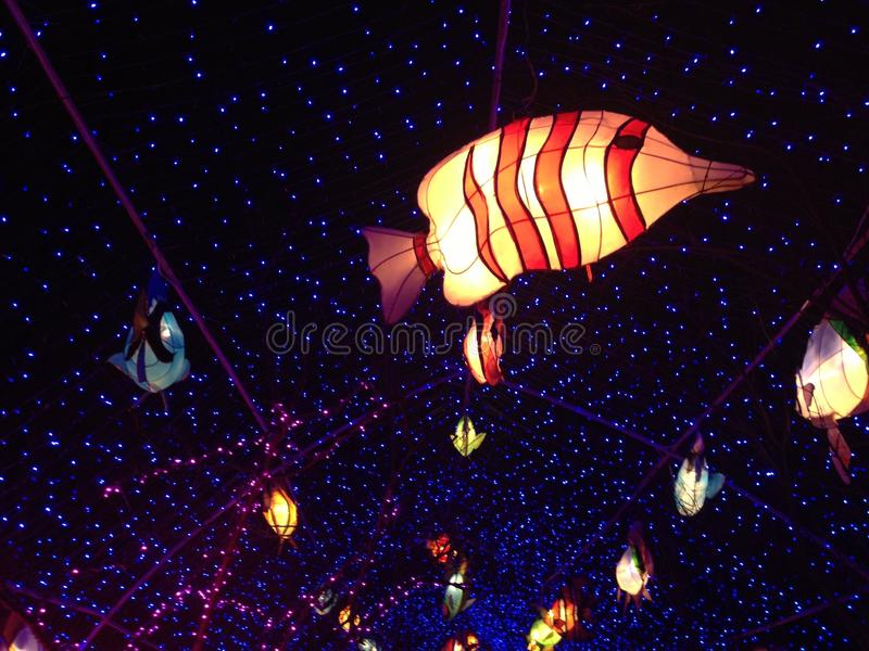 Linterna de papel china en la noche imagen de archivo libre de regalías