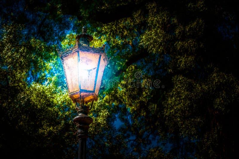 Linterna en el parque Foto del fondo imagenes de archivo
