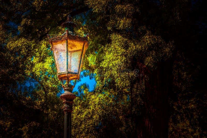 Linterna en el parque Foto del fondo imagen de archivo