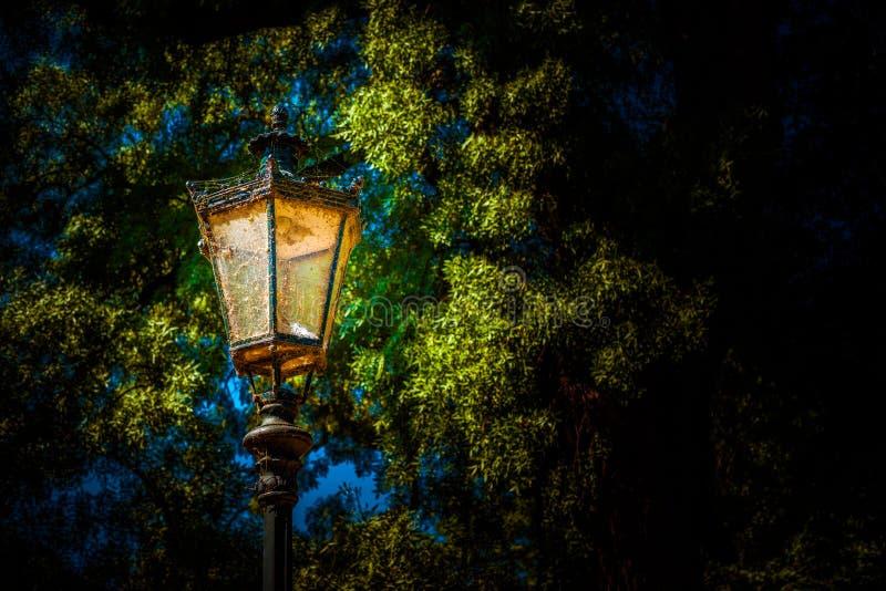 Linterna en el parque Foto del fondo fotografía de archivo