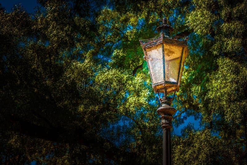 Linterna en el parque Foto del fondo foto de archivo