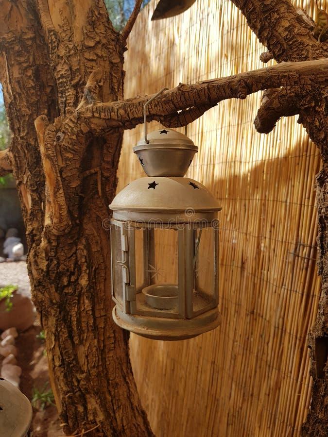 Linterna en ?rbol foto de archivo libre de regalías