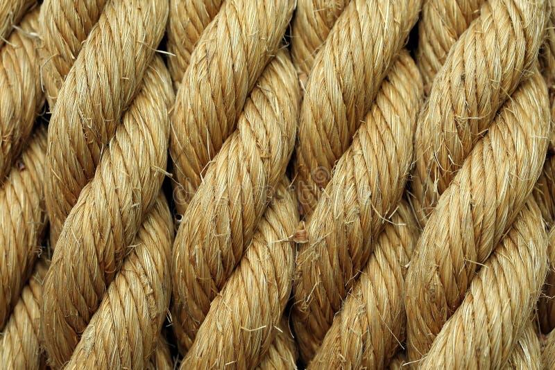 liny zdjęcie stock