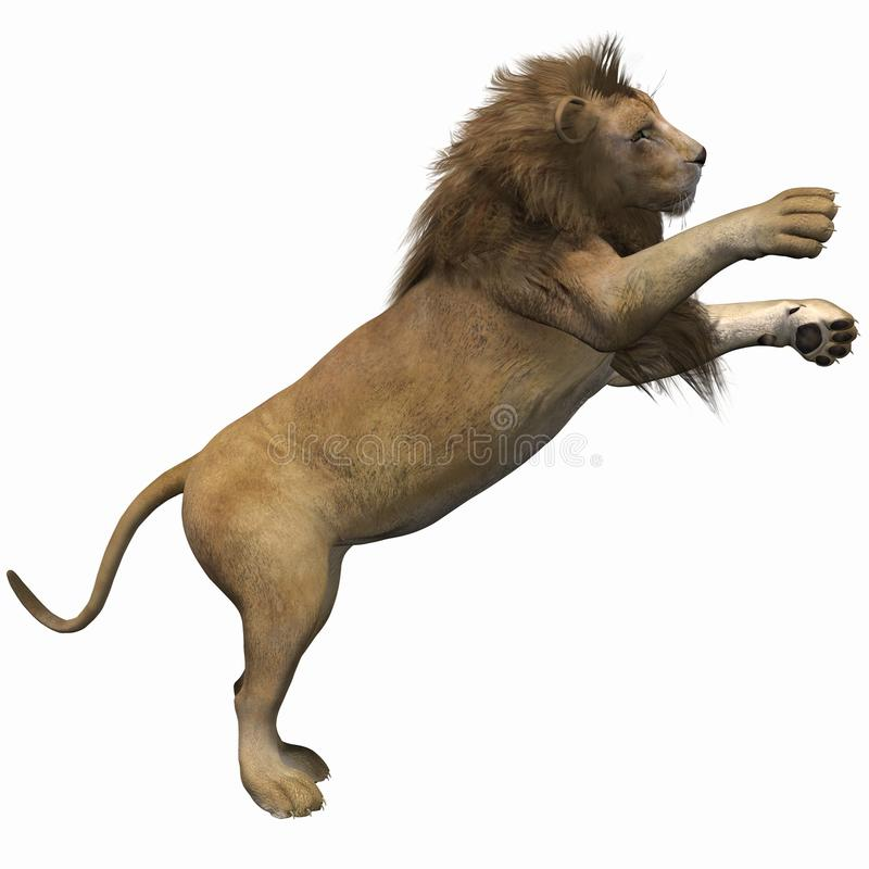 Download Lion Stock Photo - Image: 13969720