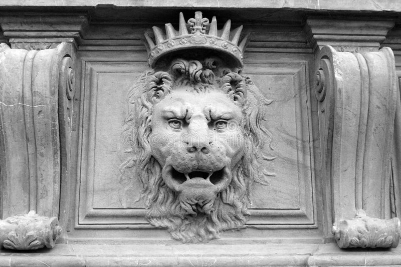 lion arkivfoto