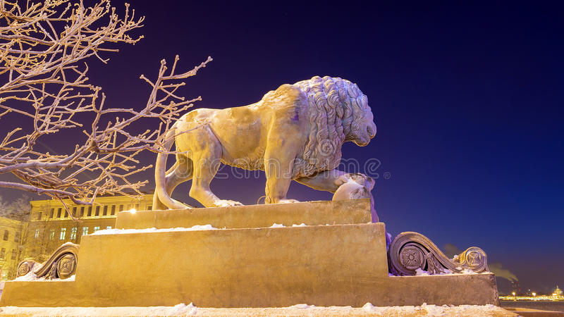 Lion on the Admiralty embankment in winter royalty free stock photography