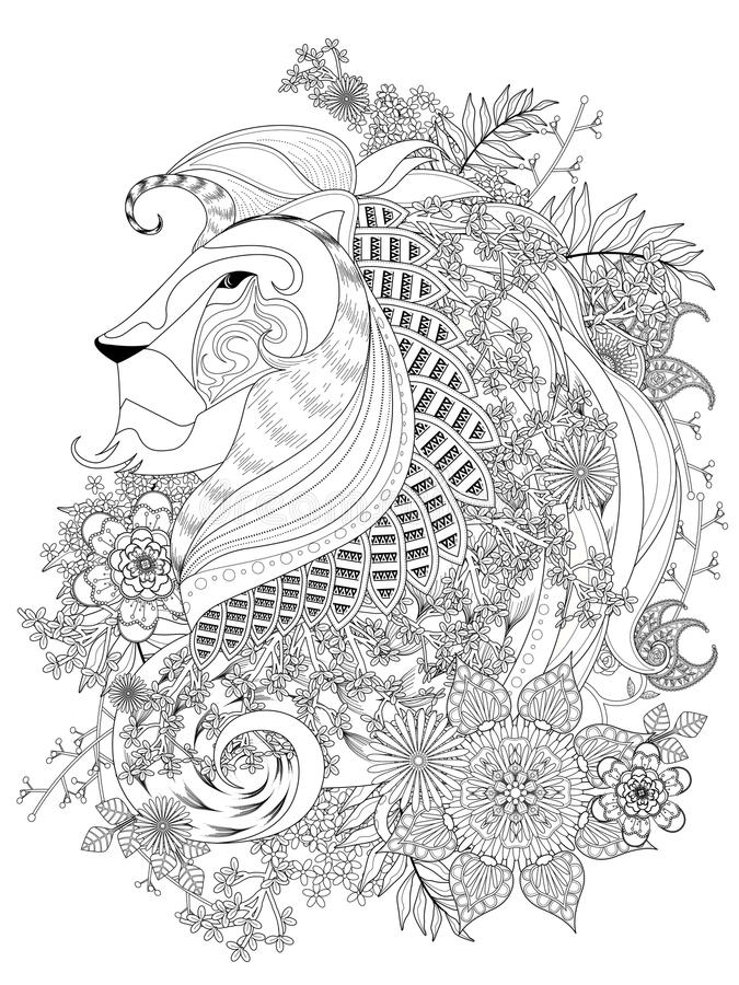Lion Adult Coloring Page Stock Vector Illustration Of Background Rh Dreamstime Com Book On
