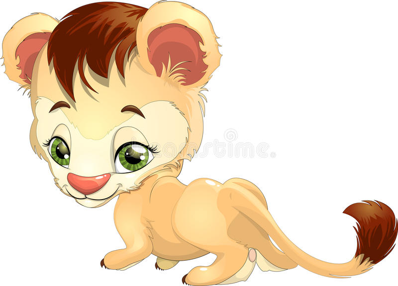 Lion. Beautiful young lion drawn on a white background royalty free illustration