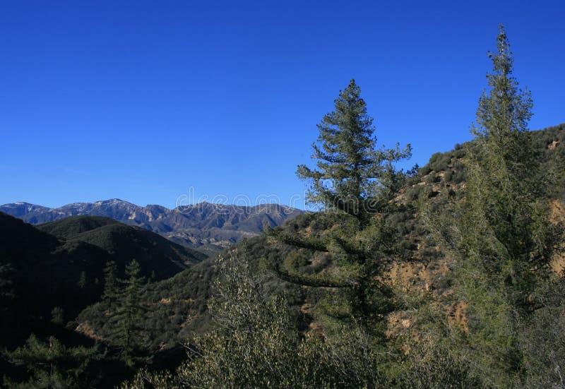 Lion Canyon Panorama fotografia stock