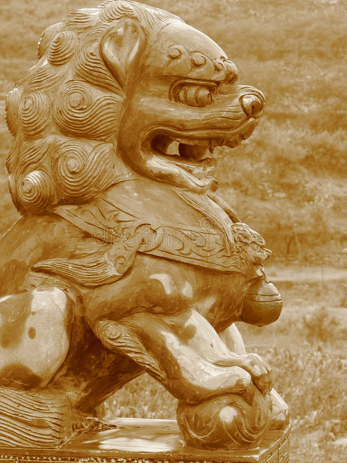 Lion chinois humide photos stock
