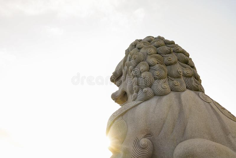 Close up shot of guardian lion royalty free stock image