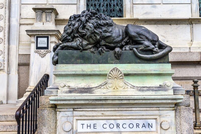 Lion Closed Cochran Gallery triste de Art Washington DC imagen de archivo libre de regalías
