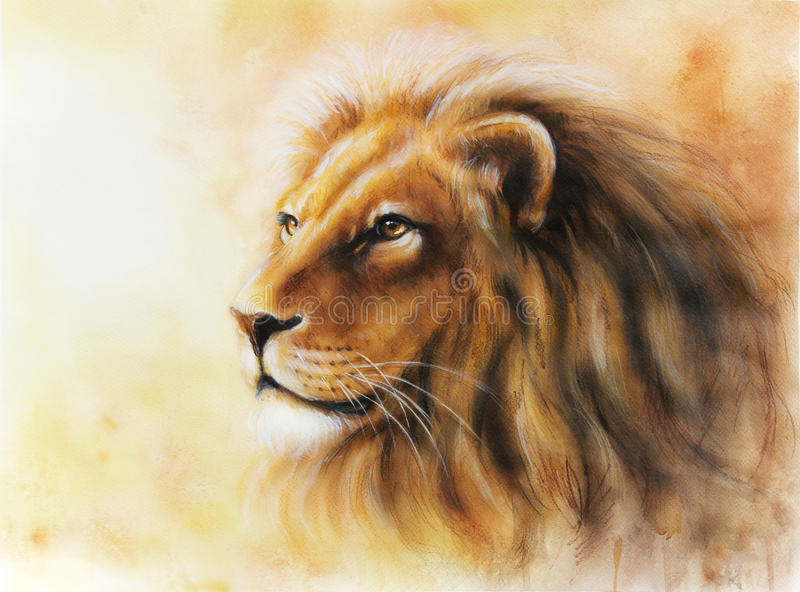 download lion color painting multicolor illustration stock illustration image 49332966