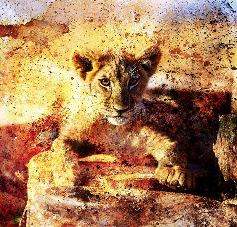 Lion cub photos and painting Abstract Collage. Eye. Contact. Abstract structure background royalty free illustration