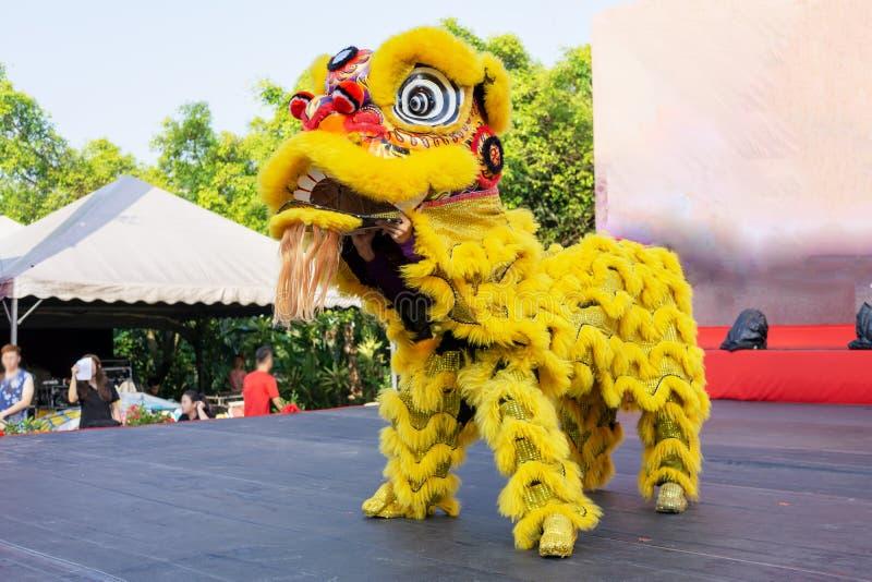 Lion Dance arkivfoton